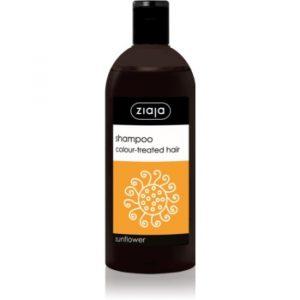 Ziaja Family Shampoo șampon pentru păr vopsit